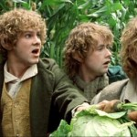 BP's Top 100 Movie Challenge #55: The Lord of the Rings: The Fellowship of the Ring, by Sarah Brinks
