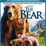 Home Video Hovel: The Bear, by Sarah Brinks