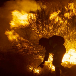 CIFF 2019: Fire Will Come, by Jonathan Leithold-Patt